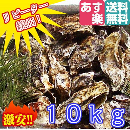 あす楽対応!10kg(約110粒)送料無料! 宮城県産 殻付き牡蠣 殻付き 無選別牡蠣 殻付 カキ 加熱用 一年子 松島牡蠣屋