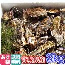 あす楽対応!牡蠣 3kg(約38粒)クール便送料無料!宮城県産 殻付き 牡蠣 殻付き 無選別牡蠣 牡蠣 殻付 カキ 加熱用 一年子 松島牡蠣屋 BBQ お花見