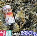 あす楽対応!牡蠣 SS20kg(約400粒)クール便送料無料!宮城県産 殻付き 牡蠣 殻付き 無選別牡蠣 牡蠣 殻付 カキ 加熱…