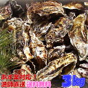 あす楽対応!牡蠣 3kg(約38粒)送料無料!宮城県産 殻付き 牡蠣 殻付き 無選別牡蠣 ...