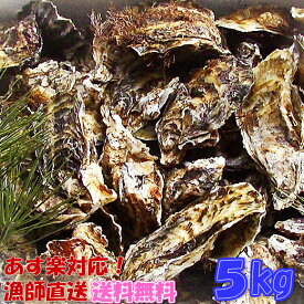 あす楽対応!牡蠣 5kg(約60粒)送料無料!宮城県産 殻付き 牡蛎 牡蠣 殻付き 無選別牡蠣 牡蠣 殻付 カキ 加熱用 一年子 松島牡蠣屋 お花見にGWBBQに父の日母の日バーベキューに