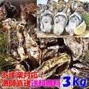【新生牡蠣スタート あす楽発送】牡蠣 3kg 3キロ 殻付き 牡蠣 殻付き 牡蛎 牡蠣 殻付 宮城県産 無選別牡蠣 カキ 加熱…