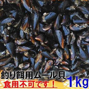【あす楽対応】釣り餌に ムール貝 「ムラサキイガイ1kg」冷凍品 1キロ イガイ カラス貝 ムール貝 釣りエサ クロダイ 黒鯛 チヌ 石鯛 コブダイ カワハギ釣りに 【食用ではありません】【60