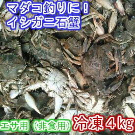 イシガニ 石蟹 マダコ釣りに 石カニ 食用ではありません。真蛸釣りに 4kg 冷凍発送