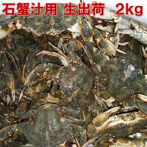 生出荷!カニ汁用!石蟹小サイズ2kg 活状態での梱包 松島牡蠣屋 漁師の店長自ら漁獲です!蟹汁 味噌汁 中華料理 フィリピン料理にも 目安:2kgで40杯程度【#元気いただきますプロジェクト】