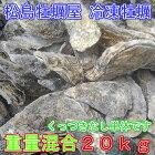 重量MIX20kg(約200粒)冷凍便送料無料!宮城県産殻付き牡蠣殻付き殻付カキ加熱用一年子松島牡蠣屋無選別牡蠣