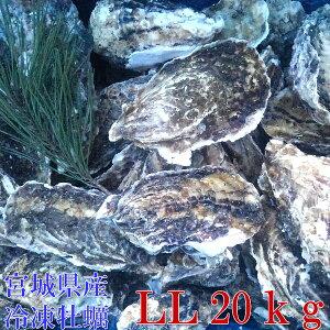 LLサイズ20kg(約124粒)冷凍便送料無料! 宮城県産 殻付き牡蠣 殻付き 殻付 カキ 加熱用 一年子 松島牡蠣屋 無選別牡蠣【#元気いただきますプロジェクト】
