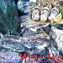 牡蠣【1000円ポッキリ 送料無料】殻付き 牡蠣 1.5kg 無選別MIX 冷凍便 送料無料!1.5キロ 宮城県産 殻付き牡蠣 殻付き…
