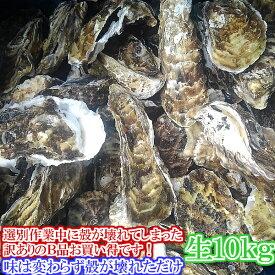 【生の】割れB品10kg(約120粒)送料無料! 宮城県産 殻付き牡蠣 殻付き 殻付 カキ 加熱用 一年子 松島牡蠣屋 無選別牡蠣 訳あり あす楽対応