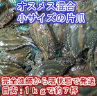 宮城県産ワタリガニ片爪爪なし渡り蟹ガザミ梭子蟹ケジャンにも!活発送1kg(約7杯)〜@800円