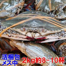 【訳ありセール中 要説明確認】ワタリガニ メス 渡り蟹 ガザミ 梭子蟹 ケジャンにも!活発送 中サイズ2kgで8-10杯くらいです。宮城県産 送料無料