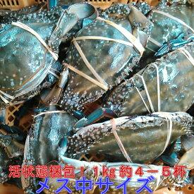期間限定10%OFF中★ワタリガニ メス 渡り蟹 ガザミ 梭子蟹 ケジャンにも!活発送 中サイズ2kgで8-10杯くらいです。宮城県産 送料無料