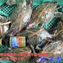 宮城県産 ワタリガニ オス大サイズ 渡り蟹 ガザミ 梭子蟹 ケジャンにも!活発送 2kg(約6杯)〜