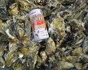 新商品!8kg送料無料 日本三景松島産 SSサイズ殻付き牡蠣殻付き 無選別牡蠣 普通便配送 加熱用