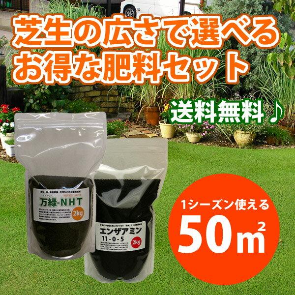 【送料無料・東北と沖縄除く】広さで選べる芝生の肥料 50平米(約15坪) 肥料・サッチ分解・病虫害予防など多機能肥料です