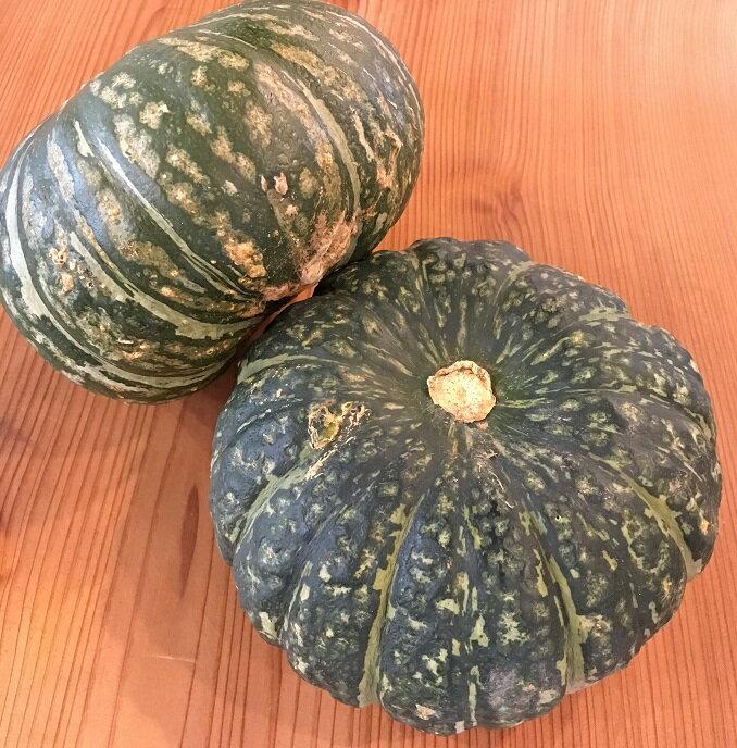 かぼちゃ 三重産【野菜セット同梱で送料無料】