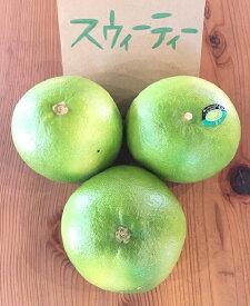 スウィーティー イスラエル産【野菜セット同梱で送料無料】