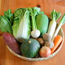旬の野菜10品以上+特Aランク伊賀米5kgセット!【本州・九州・四国は送料無料】 【 野菜 セット 野菜セット 新鮮 フレ…