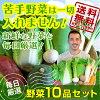野菜10品セット