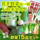 野菜15品セット 新鮮な野菜を毎日厳選してお届けします!