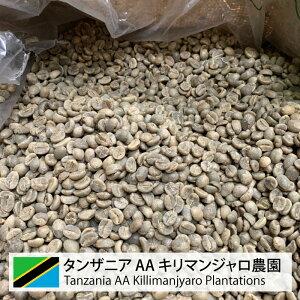 コーヒー 生豆 タンザニア キリマン 珈琲 豆 未焙煎 1kg タンザニア AA キリマンジャロ農園 (Tanzania AA Killimanjaro Plantations)