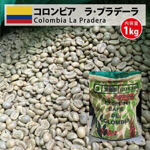 コーヒー 生豆 コロンビア 珈琲 豆 未焙煎 1kg コロンビア ラ・プラデーラ(Colombia La Pradera)