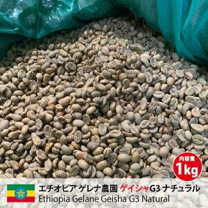 コーヒー 生豆 珈琲 豆 未焙煎 1kg エチオピア ゲレナ農園 ゲイシャG3 ナチュラル (Ethiopia Gelane Geisha G3 Natural)
