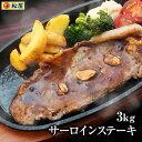 【松鷹屋】サーロインステーキ30食セット 3kg 100g×30枚 ステーキ サーロイン 米国産牛 最高級 お取り寄せ グルメ食…