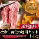 焼肉セット 1.4kg(松阪牛鉄板焼き 900g+秘伝のタレ漬けホルモン500g)焼肉やバーベキュー(BBQ)【送料無料】松坂牛…