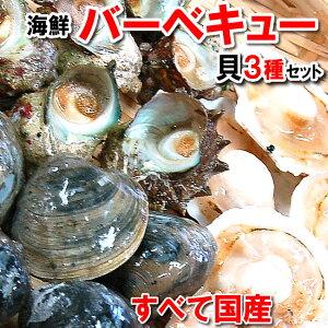 【送料無料】国産 貝類3種の海鮮バーベキューセット【冷凍】ホタテ(片貝)・サザエ・ホンビノスの3種の貝のセットです。(さざえ、ほたて、帆立、bbq)【smtb-k】【kb】