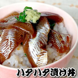 さかな屋自家製!『とろハタハタ漬け丼』 【冷凍】 3食入【浜坂産】(はたはた、白ハタ、とろハタ)
