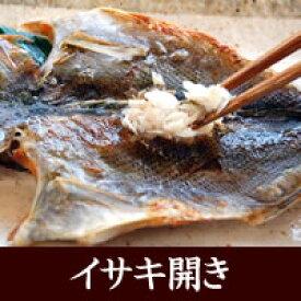 イサキ開き【冷凍】 1尾入×250-299g程度【浜坂産】(高級魚・いさき・干物)