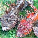 朝とれ!新鮮!山陰浜坂港の高級魚「活・おこぜ」