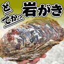 ドでか!ボンベ牡蠣(天然岩牡蠣)【生】超ビッグ 2個【鳥取産】(かき、カキ、イワガキ、いわがき)
