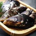 高級貝 イガイ(貽貝)【生】約500g程度(3〜8個程度入り)【浜坂産】海鮮バーベキューに!