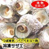 (送料無料)つぼ焼き・バーベキュー用サザエ【冷凍】約1kg入≪冷凍発送専用≫さざえ、bbq