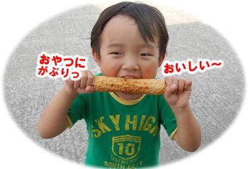 【送料無料】特選米寅の焼き竹輪(ちくわ)2束セット(10本入)