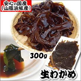 生わかめ(若布・ワカメ)【冷凍】 約300g  【浜坂産(国産)】 初摘みわかめですので、柔らかくて美味しいです(おさしみわかめ)