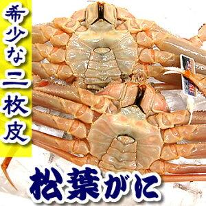 (二枚皮)訳あり・松葉がに(ボイル・冷凍)1枚【浜坂産】みそが濃厚で美味!希少な脱皮直前の蟹です。