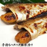 高級純米酒「蔵の素」使用!自家製!浜坂産!「はたはた西京漬け(大)」5匹