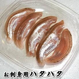 お刺身用 生とろハタハタ フィレ(冷凍)約60g入(山陰浜坂産) 脂がのったハタハタをお刺身用に下処理しています。(はたはた、白ハタ)