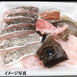 天然本クエ鍋セット(冷凍) 約350〜450g入(身とアラ)【山陰浜坂産】(寒クエ、くえ、九絵、アラ)