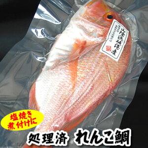 天然れんこ鯛 1尾 約32-34cm (生冷凍・調理済) 【浜坂産】(れんこだい、れんこたい、レンコダイ、レンコ鯛、連子鯛、黄鯛)