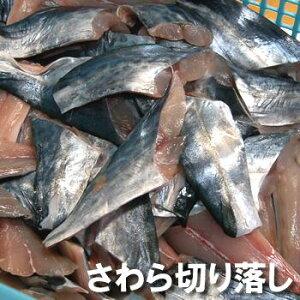 (セール)訳あり・寒ざわら切り落し(切れ端)【冷凍】約500g入 【浜坂産】一年で最も脂がのった時期のサワラです (寒ザワラ・サワラ・鰆・魚・切身・切れはし・不揃い、切り落し、