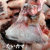 【アラ炊き用!魚の頭!】「鯛の頭」(冷凍)