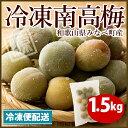 冷凍梅 南高梅 和歌山県 みなべ町産 1.5kg