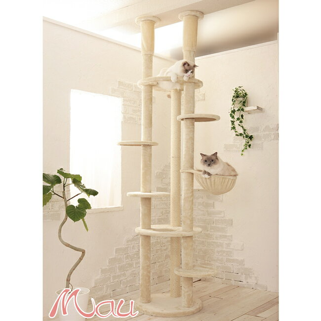 【安心1年保証】大きなハンモックの付いたスリムな突っ張りタワー/Mauタワーエシェル/オシャレなデザインで気品があります/大型キャットタワー/大型ねこタワー/大型猫/据置き/送料無料