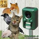 1年保証 猫よけ 猫対策 猫撃退 害獣撃退 アニマル ガーデン バリケード超音波 & ストロボライト で害獣を追い払う!ソ…