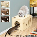 1年保証 猫 おもちゃ 猫箱 ボックス ベッド 遊び ねこ ネコ 玩具 オモチャ 小屋 室内 ストレス発散 運動不足 対策 多…