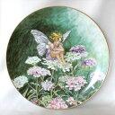 キャンディタフト Candytuft Fairy 花の妖精が可愛らしいフラワー フェアリー 絵皿 シシリー メアリー バーカー ドイ…